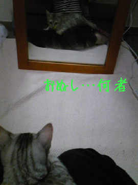 10_01_10_01_2
